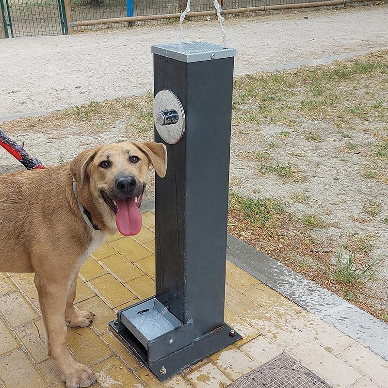 fuente estela mixta canina